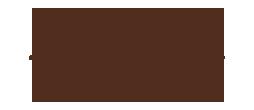 litle things logo